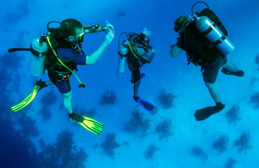 How To Bring Your Dream of Being a Scuba Diver to Life